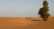 Cilësitë e prijësit të Besimtarëve,  Ali bin Ebi Talib (Allahu qoftë i kënaqur prej tij)
